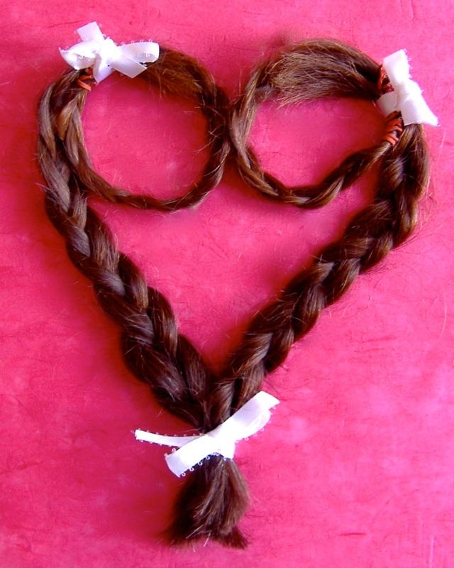 Sri's Hair Heart Braid 2
