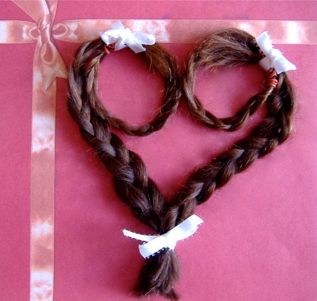 Sri's Hair Heart Braid 3